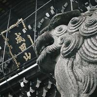 海老蔵襲名祝い成田山新勝寺参拝19.01.26 10:57 - スナップ寅さんの「日々是口実」