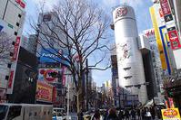 2月22日㈮の109前交差点 - でじたる渋谷NEWS