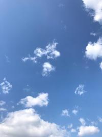 風天 - あらびき
