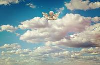 大切なものを守る意外な方法 - るんじんさんの帽子 ~天使からのエール~