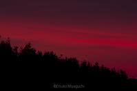 赤からピンクに、朝焼け。 - ekkoの --- four seasons --- 北海道