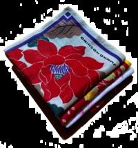 アイロンかけ - 操の気まぐれ日記