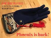 STOOPER 金襴 「鳳凰」復活! Gold brocade 'Phoenix' is back - 新米ファルコナー(鷹匠)の随想録