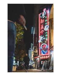 鶏豚牛魚 - ♉ mototaurus photography