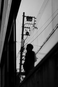 電線マン - haze's photos