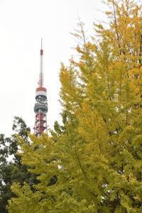 黄葉と東京タワー - 僕の足跡