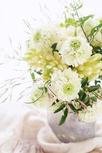 清楚でゴージャス、エレガントなブーケ♪ - お花に囲まれて