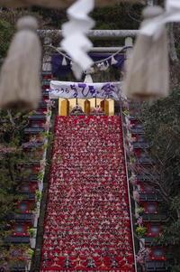 神社巡り『御朱印』⛩遠見岬神社 - ハタ坊(釣り・鳥撮・散歩)