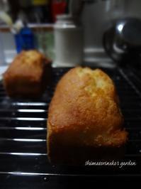 オレンジパウンドケーキ - シマトリネコの庭日記