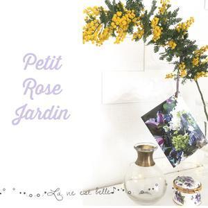 Petit Rose Jardin     〜お花と紅茶でおもてなし〜