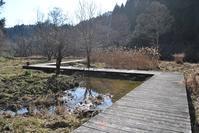 春よ来い♪早く来い♪ - 千葉県いすみ環境と文化のさとセンター