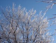 埃だって時間をかけて集まると・・・ - 2013年から釧路に住み始めた宮崎英之です。