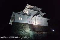 「小田原の海岸とお城」河津桜と菜の花の旅 - こころ絵日記 Vol.1