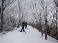 冬の散歩道 - まんぼう日記
