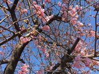2月26日 - 川越画廊 ブログ