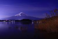 31年2月の富士(24)夜の大石公園の富士 - 富士への散歩道 ~撮影記~