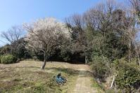 2019.02.25大平山~大窪越 - Bicycle Touring Photo Gallery.