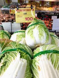 赤字覚悟 一把 100円 白菜 - 設計事務所 arkilab