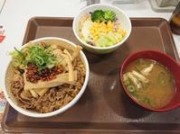 2/26食べラーメンマ牛丼並サラダセット¥650@すき家 - 無駄遣いな日々