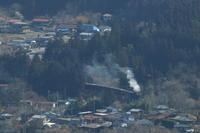 花粉に霞む安谷川- 2019年早春・秩父 - - ねこの撮った汽車