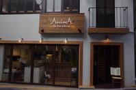 AnimA la tua osteria (アニマ ラ トゥア オステリア)東京都港区南青山/ピッツェリア イタリアン~表参道をぶらぶら その2 - 「趣味はウォーキングでは無い」