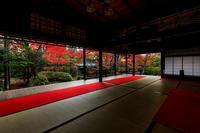 京の紅葉2018夕暮れ時の大法院 - 花景色-K.W.C. PhotoBlog