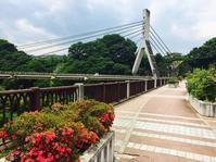 旧秩父橋【ゆずこ さん】 - あしずり城 本丸