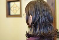 「髪色がオレンジぽくなりやすい方のエドル カラー」 - 観音寺市 美容室 accha