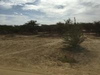 モーリタニアとセネガルの国境は、20分ぐらいで手続き完了です! - せっかく行く海外旅行のために
