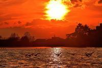 みちのく高松の夕陽景 - みちのくの大自然