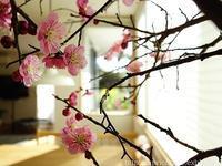 3月の家事ごよみ - シンプルで心地いい暮らし