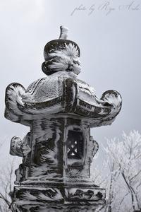 灯籠にも霧氷 - Ryu Aida's Photo