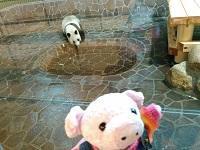 王子動物園 -