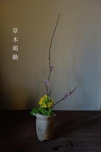 草木萌動 - g's style day by day ー京都嵐山から、季節を楽しむ日々をお届けしますー