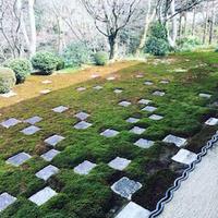 冬の京都 - NY/Brooklynの空の下