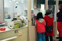 ペットトリムを見る家族 - 照片画廊