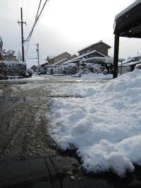 遠ざかる雪景色 - タビノイロドリ