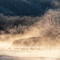 2019北海道Day2  その4... - 旅行や写真など感じるままに