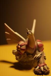 パルキア撮った - 日本写真かるた協会~写真が好きなオッサンのブログ~