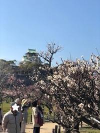 もうすぐ春ですね♪ - ボディ&アロマリラクセーション*WONDERLAND 大阪住吉区