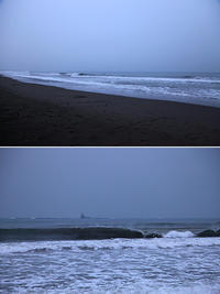 2019/03/01(FRI) 台風2号のウネリがあります......。 - SURF RESEARCH