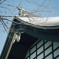 節分総持寺、裕次郎の墓参り19.02.03 12:13 - スナップ寅さんの「日々是口実」