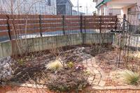 2019年2月末の庭 - my small garden~sugar plum~
