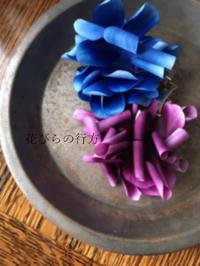 アネモネの染め始め と 庭のクリスマスローズ - 布の花~花びらの行方 Ⅱ