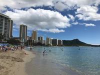 アロハ!Hawaii ① - some day