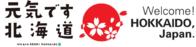 今年も北海道でスノーボード♪ - 渡バリ病棟