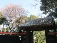 海老名市南部と周辺の旅 #1 - 神奈川徒歩々旅