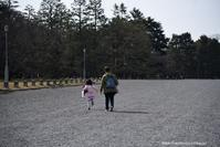 ある日の午後 - Noriko's Photo  -light & shadow-