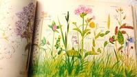 復刊『イギリス 野の花図鑑』 × リバティ - Mrs.Piggle-Wiggle's lemon drops