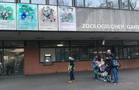 バーゼルその後(4)動物園の写真 - 紅茶国C村+E街の日々